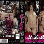 [HTMS-058] 性的拷問 美しき女体