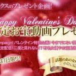 XXX-AV 21872 バレンタインプレゼント!1日限定スペシャル動画 vol.14
